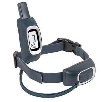 Dispositivo di addestramento da remoto PetSafe (PDT19) adatto per cani a partire da 3,6 kg (raggio d'azione 900 m)