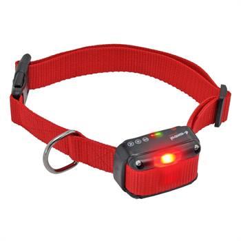 Ricevitore di ricambio DogTrace, con suono, LED e vibrazione