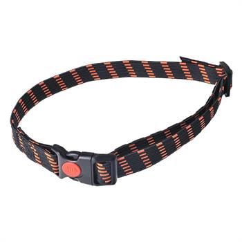 """Collare elastico per """"D-Control mini"""" + """"D-Mute S"""" DogTrace, 20 mm, arancione"""