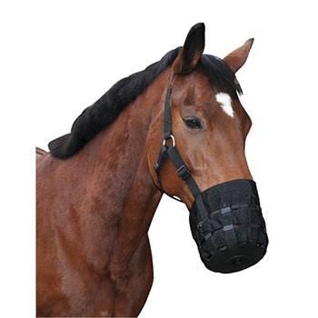 501030-1-museruola-con-capezza-museruola-anticolica-per-cavalli-e-pony.jpg