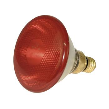 80322-1-infrared-heat-light-bulb-par-38-100w-red.jpg