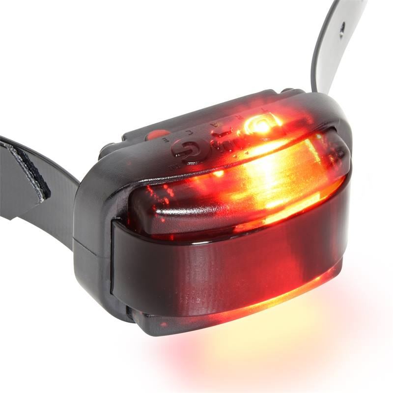 24342-4-dispositivo-da-addestramento-da-remoto-d-control-professional-2000-mini-dogtrace.jpg