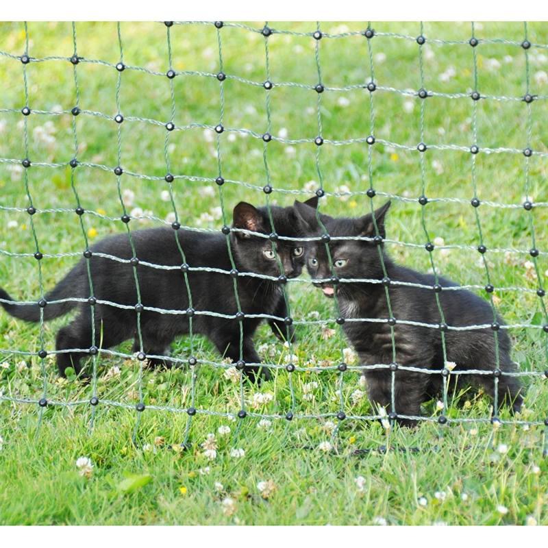 Recinto Elettrico Per Cani.Rete Elettrificabile Per Cani Gatti E Protezione Del Giardino 25 M