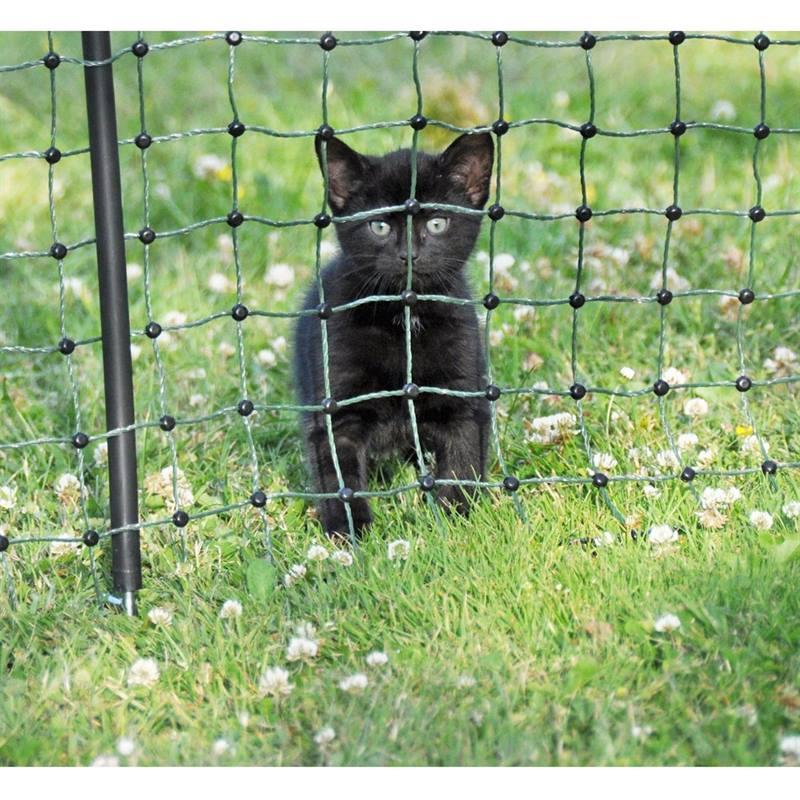 Recinzione Giardino Per Gatti.Rete Elettrificabile Per Cani Gatti E Protezione Del Giardino 25 M