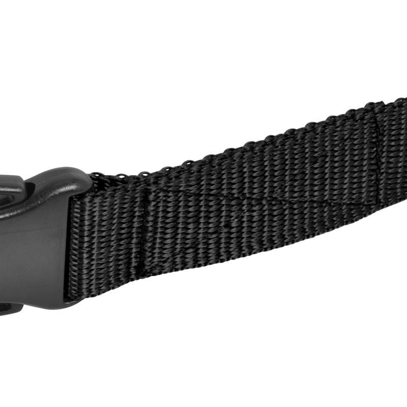 2958-Ersatzhalsband-Naht-Hundehalsband.jpg