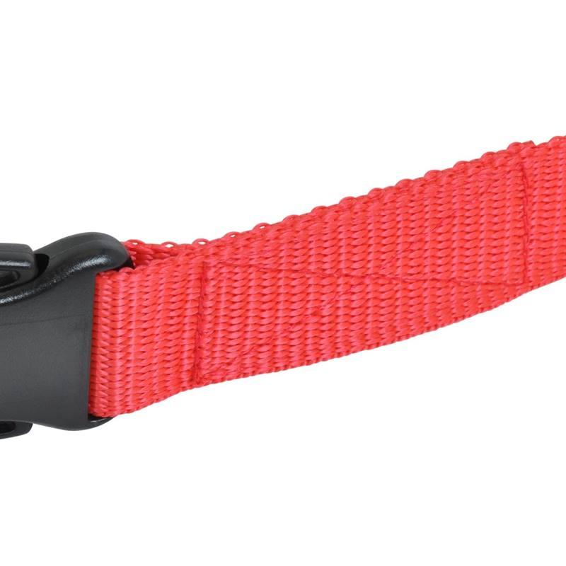 2959-Ersatzhalsband-Naht-Hundehalsband.jpg