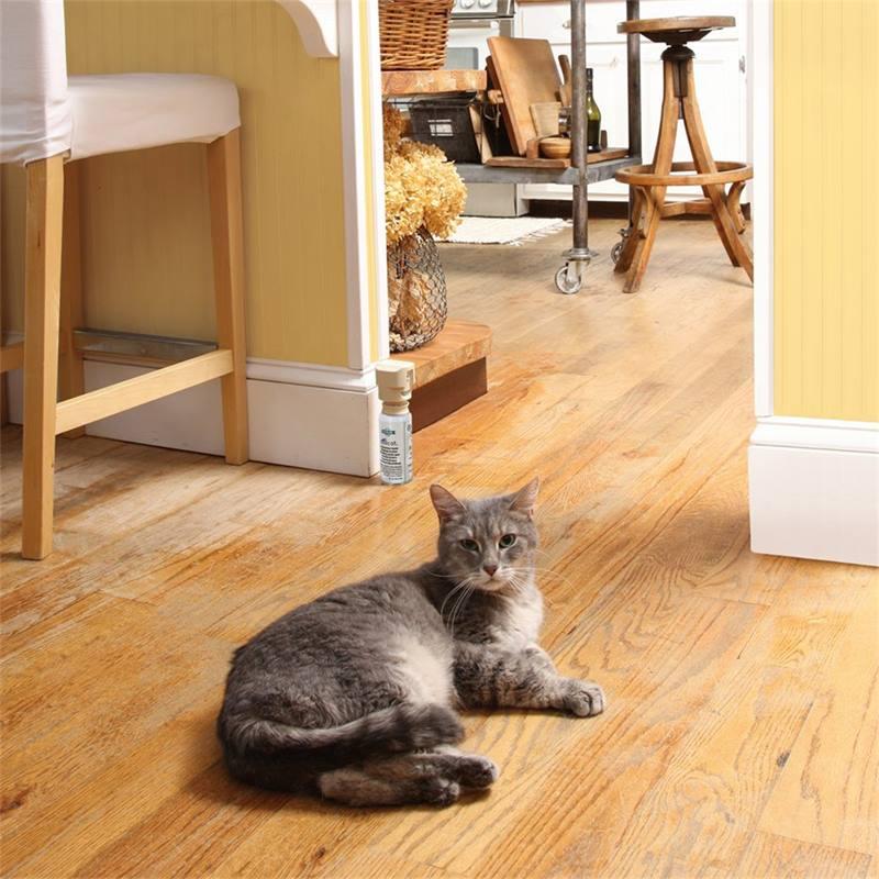 45325-12-repellente-con-aria-compressa-ssscat-innotek-per-gatti-e-piccoli-animali.jpg