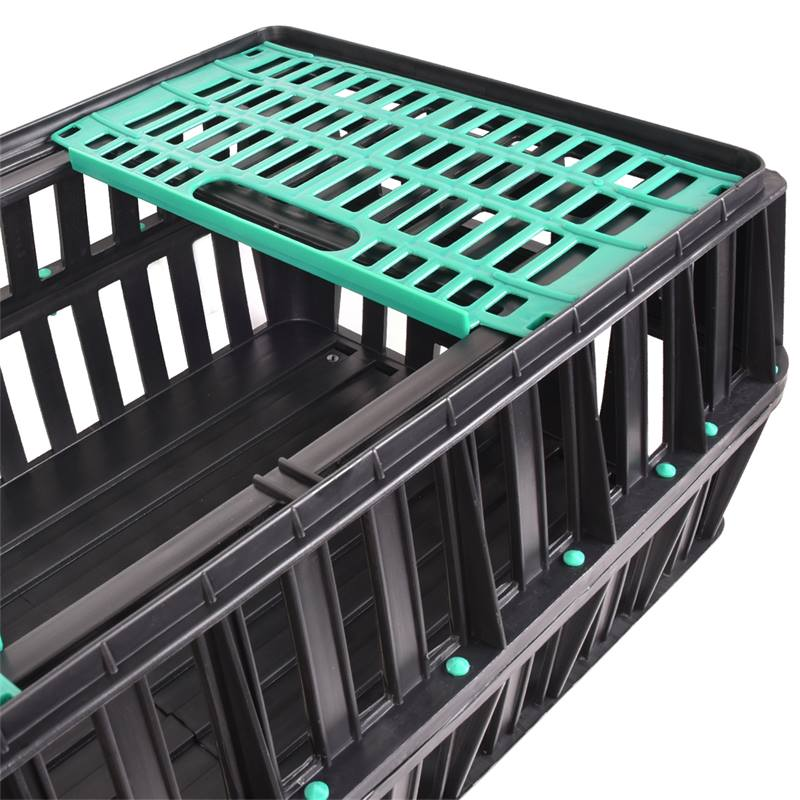 560705-4-poultry-transport-crate-small-with-2-doors-85x50x31-cm.jpg