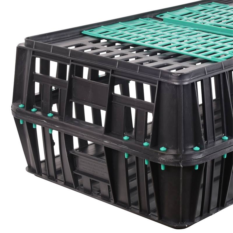 560705-5-poultry-transport-crate-small-with-2-doors-85x50x31-cm.jpg