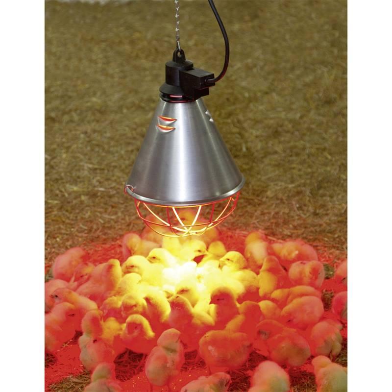 Lampada riscaldante per pulcini riflettore ad infrarossi for Lampada infrarossi riscaldamento pulcini