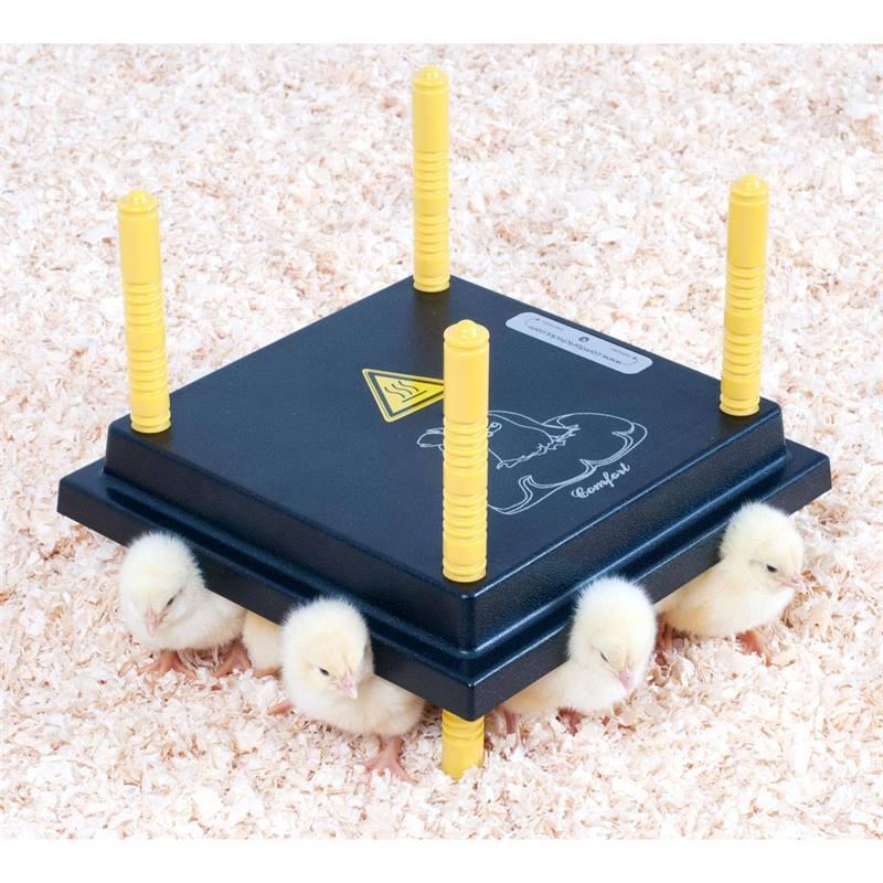 80370-2-chick-brooder-comfort-25x25cm-15w.jpg