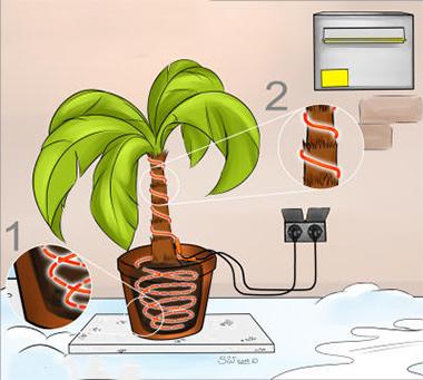 Cavi riscaldanti per piante